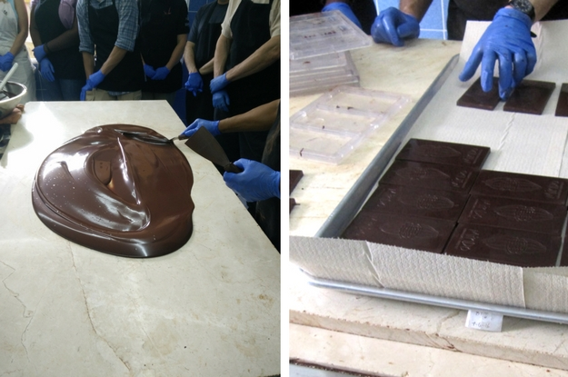 tempering-and-molding-chocolate-bars